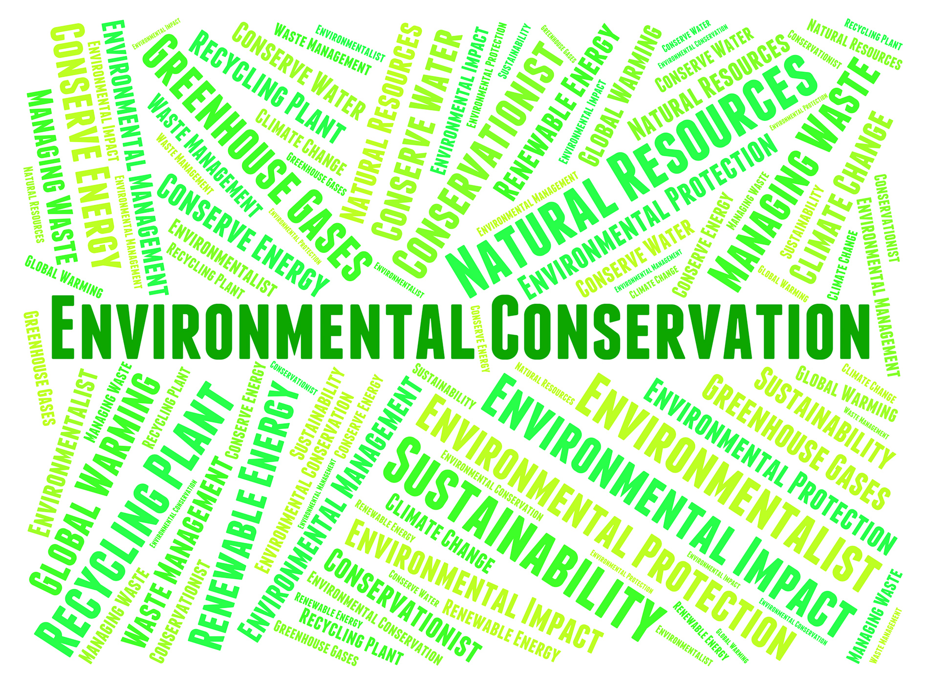 Environmental Conservation Meaning Conserving Protection And Conserve